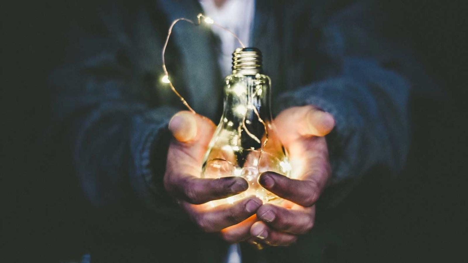avacaritei energynomics bursele jti
